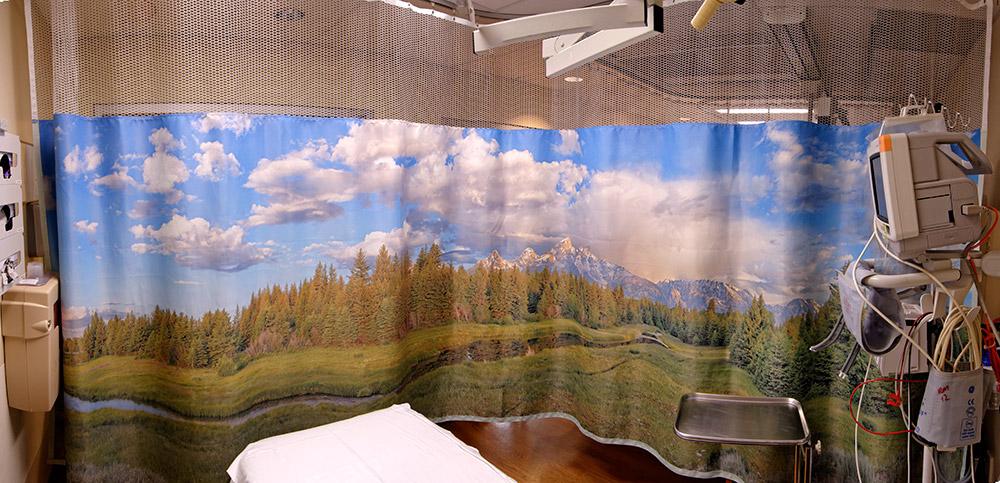 Custom* Curtains Landscape Style